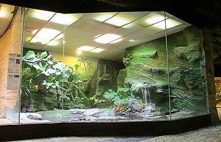 zoo glass (639x412)-min.jpg