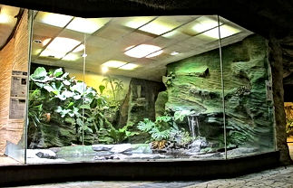 zoo glass (639x412)-min.jpg