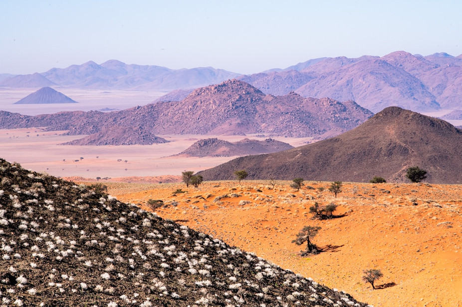 namibia-7_1.jpg