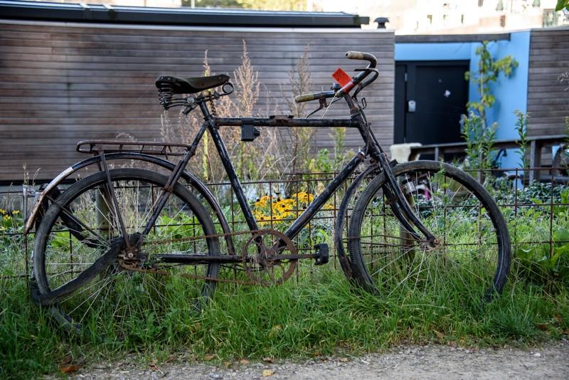 Amsterdam old bicycle.jpg