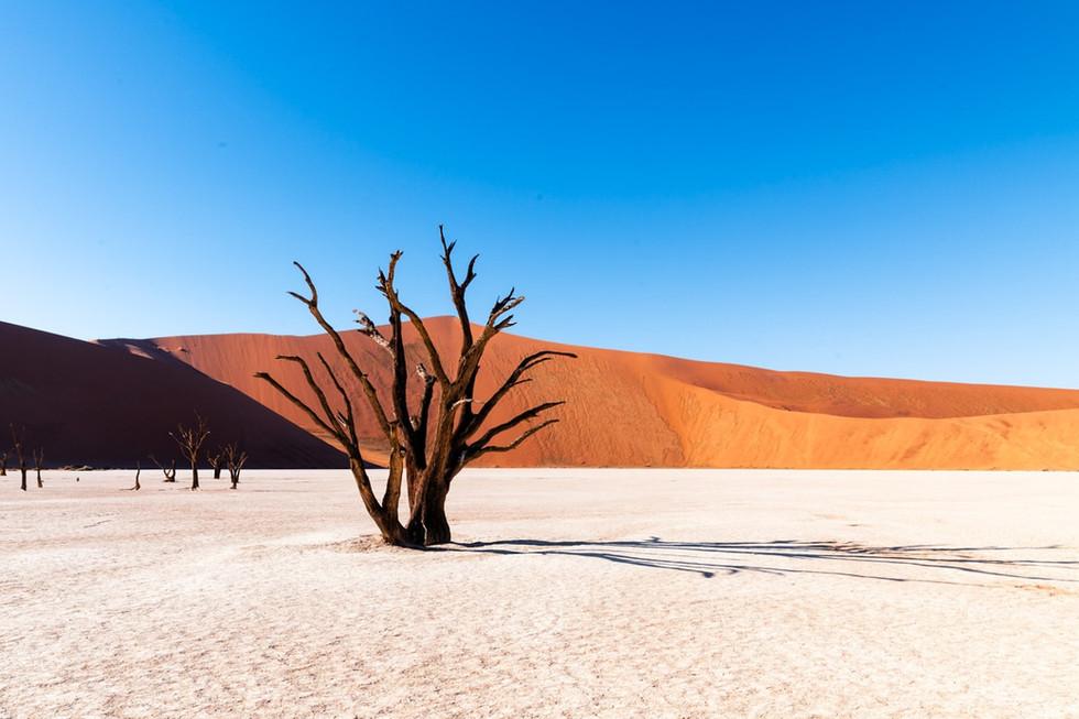 namibia-14_1.jpg