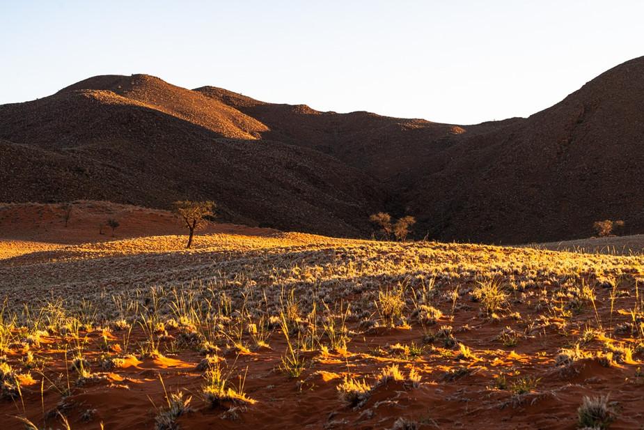 namibia-6_1.jpg