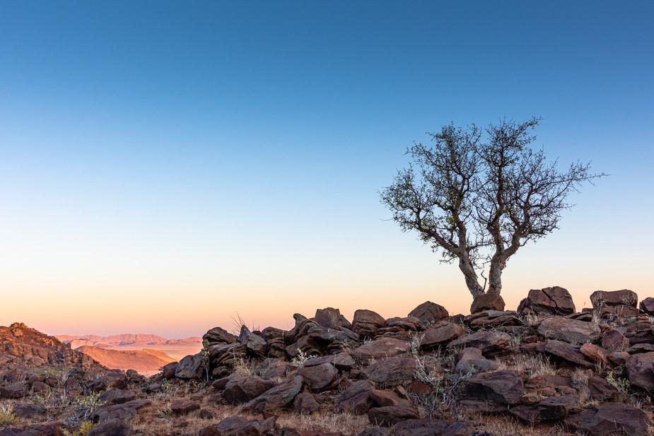 namibia-8_1.jpg