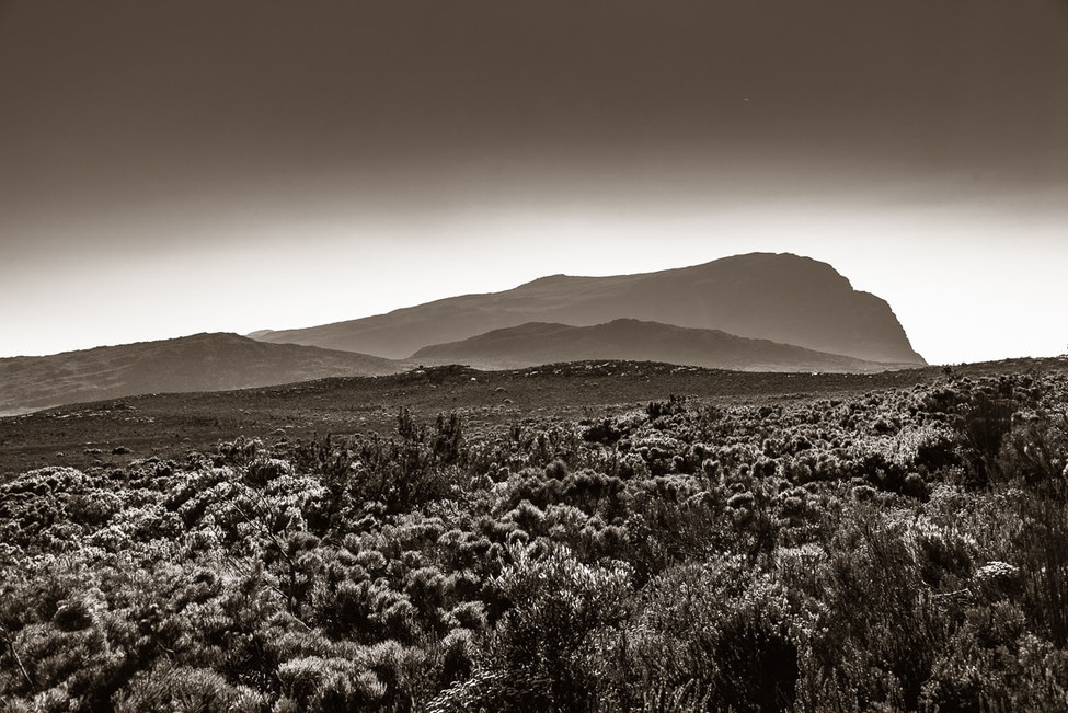 Cape_Point-1.jpg