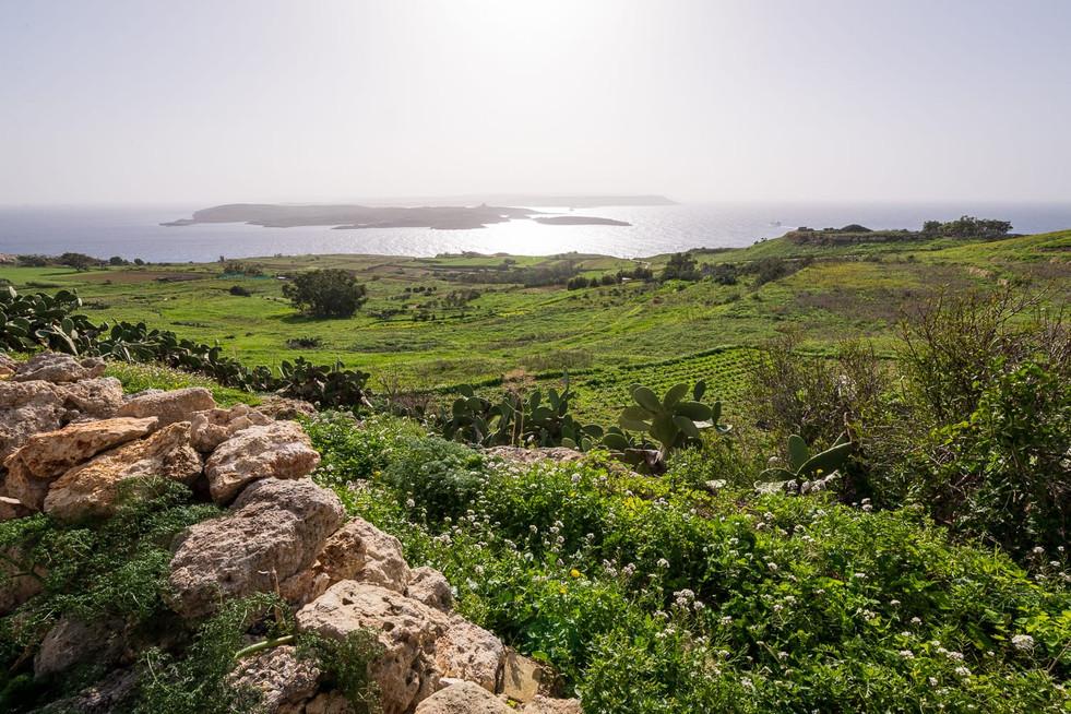 Gozo-12_1.jpg