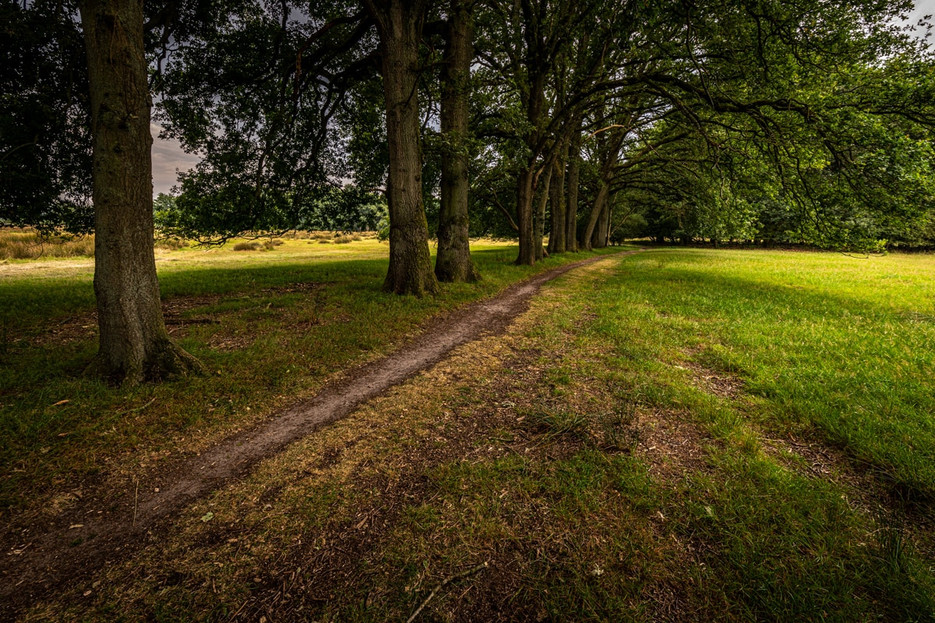 drenthe-11_1.jpg