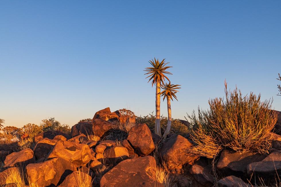 namibia-1_1.jpg
