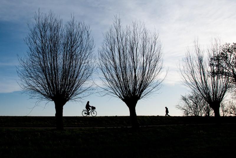 Amsterdam cyclist on dyke.jpg