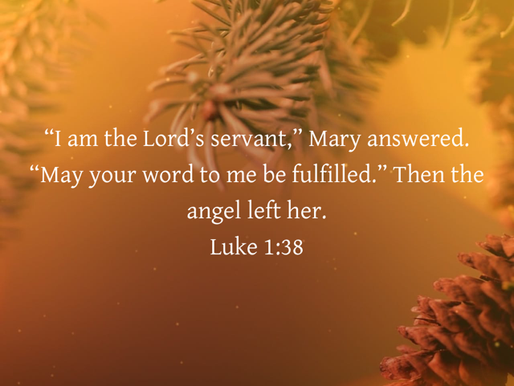 THE LORD'S SERVANT