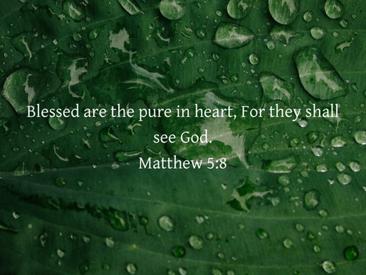 BLESSED ARE THE PURE IN HEART