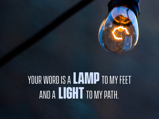 THE LIGHT OF OUR PATH