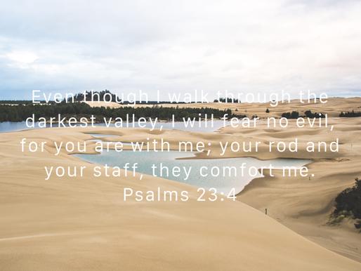 Psalm 23:4 (Daily Devotion)