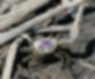 20110520102417457997654_075e8dd359-300x2