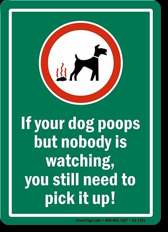 poop-pic.png