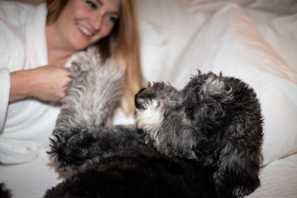 Dog friendly Hotel Boulderado in Boulder