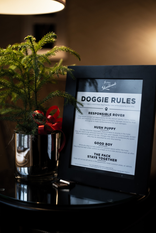 Doggie Rules for Hotel Boulderado