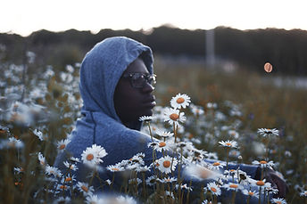Sitting with the Daisies