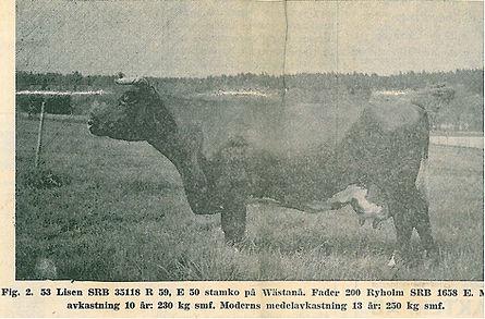Avel SRB Wästanå