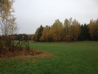 Hösten är här och det är säsong för mat av vilt och lamm!