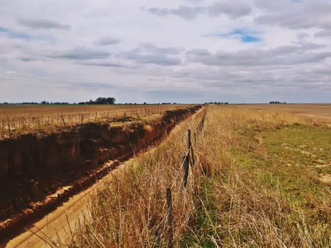 Erosión hídrica: consecuencias por desmonte y actividad del suelo