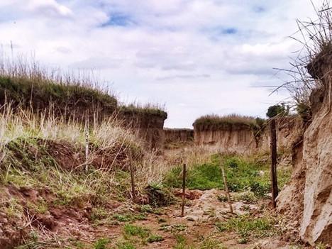 Pérdidas millonarias en el agro argentino por la erosión hídrica