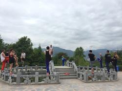 Stance and Balance Training