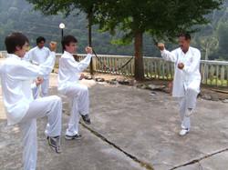 Fujian White Crane