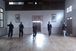 Xingyi practice