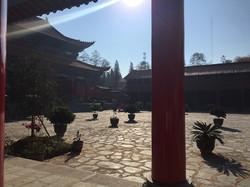 Rising Dragon Martial Arts School