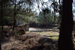 Kung Fu Training Area
