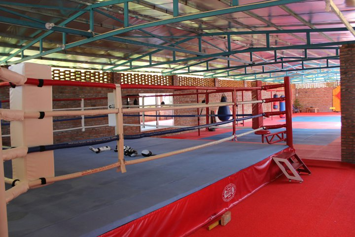 Full size Boxing Ring