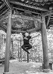 Shaolin Master China