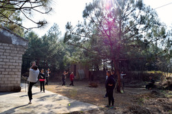 Martial Arts Class in the Forest
