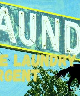 DIY Laundry Equine Detergent