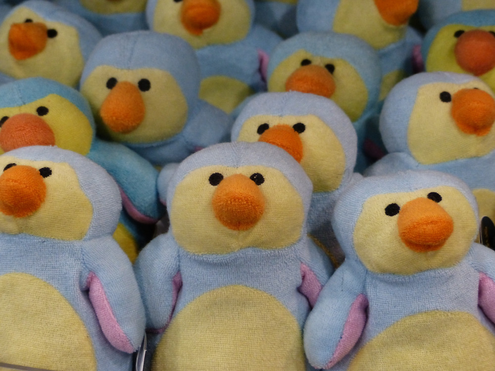 An image of a large amount of stuffed toy penguins, arranged together in lines.