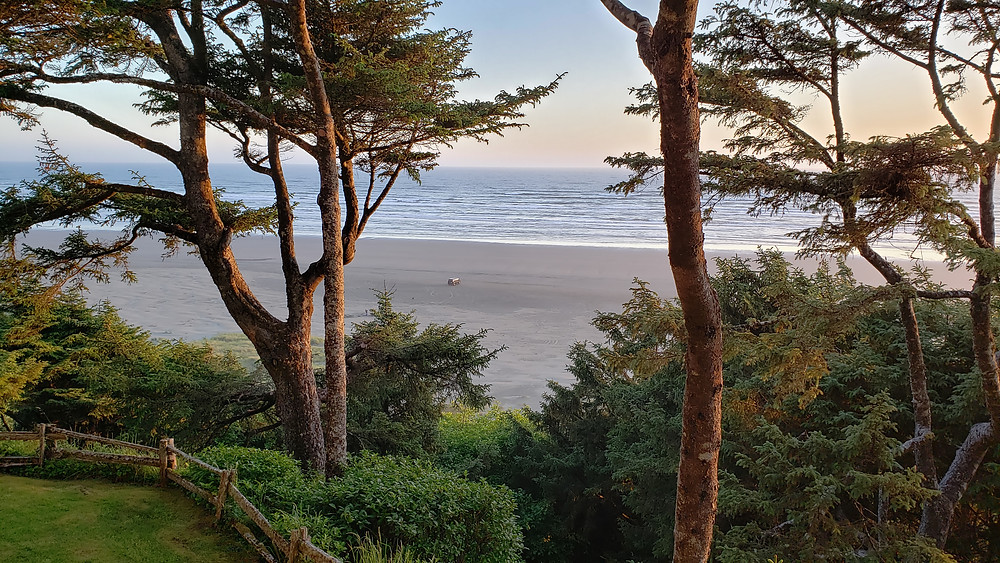 A piece of photography by Jim Waters, showing a beach viewed through the trees. The trees are slender and their branches are raised so there is a good view of the ocean. A van, made small by the perspective of the image, sits alone on the beach.