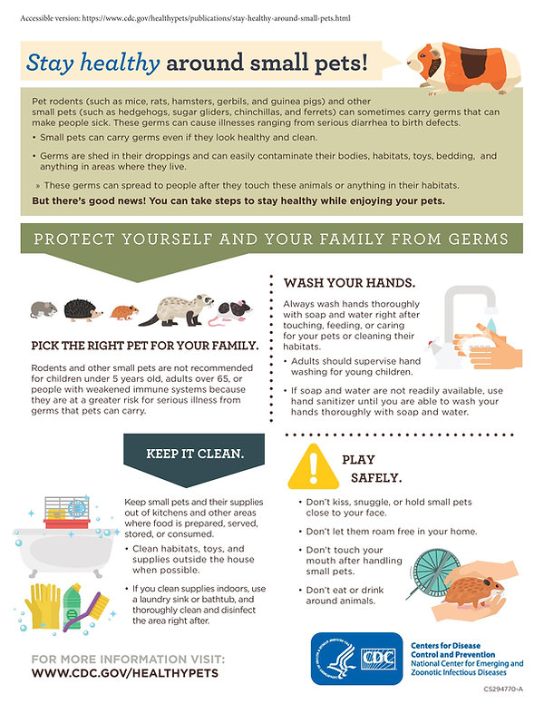 Safety Flyer for Hedgehogs-page-001.jpg