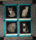 4 Cats in Window 200220.jpg