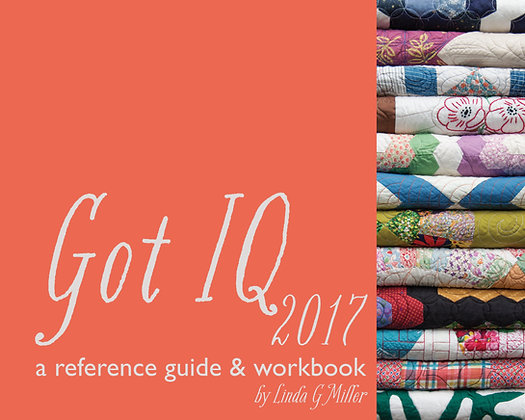 Got IQ 2017  a reference guide & workbook
