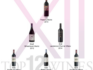 Results - Top6 Merlot tasting on May in Cape Town