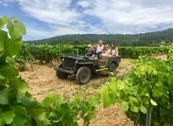 Dans les vignobles du Domaine Jaume