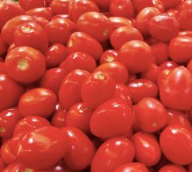 Rome Tomato Pound