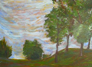 NYSSSA Landscape.jpg
