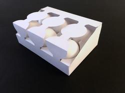 Egg Carrier Final Model