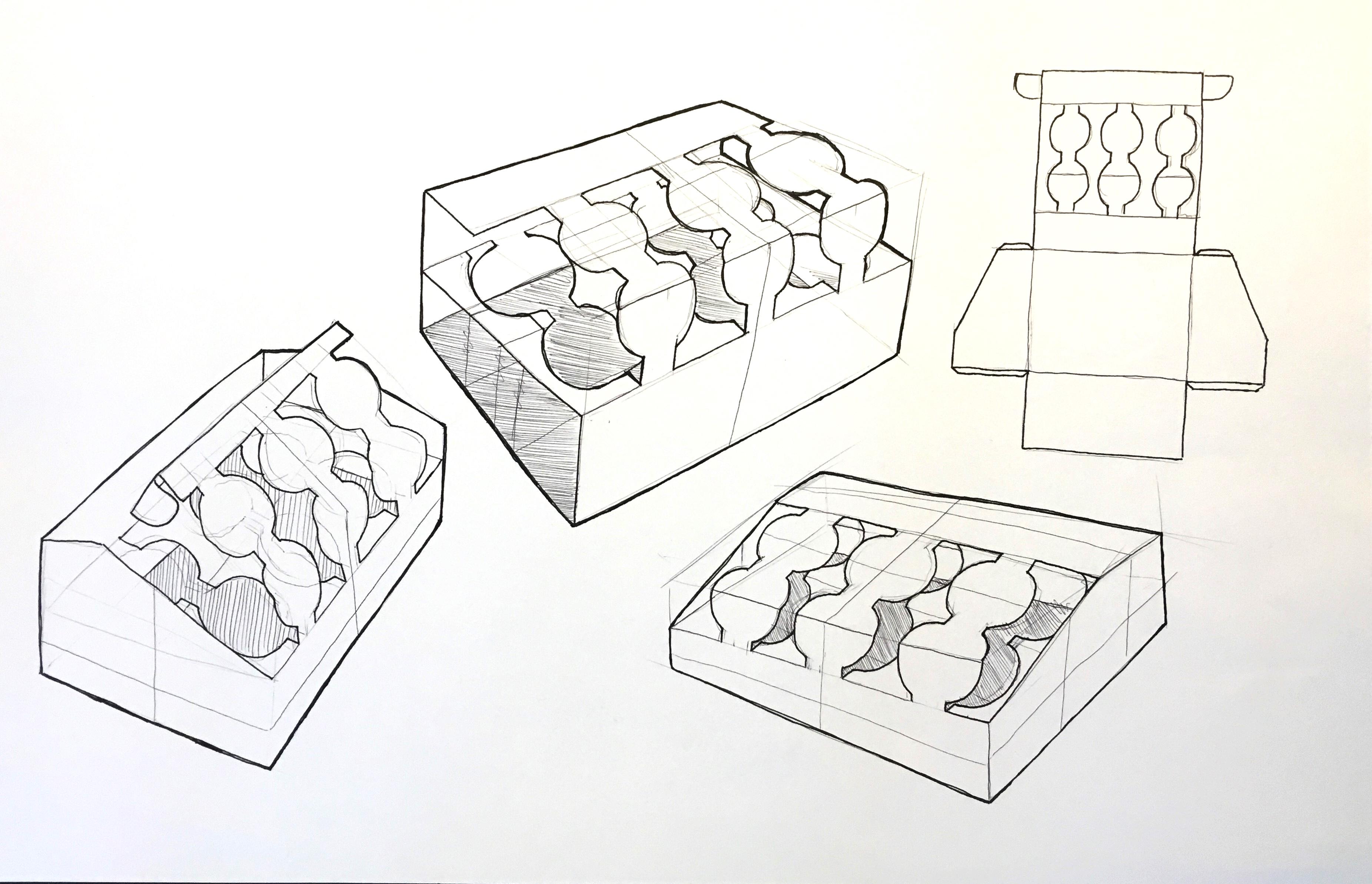 Egg Carrier Sketches