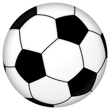 Soccer_ball_animated.svg.png