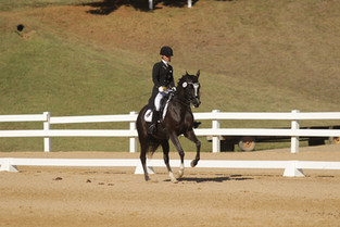 Damsels In Dressage - Part 3