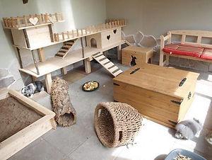 indoor set up 38.jpg