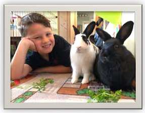 HRS rabbits and children.png