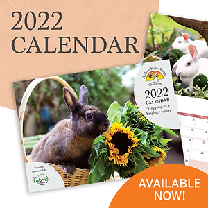2022 Calendar - Hopping to a Brighter Future